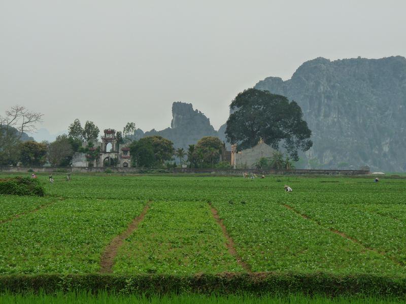 Blick auf weiter Felder