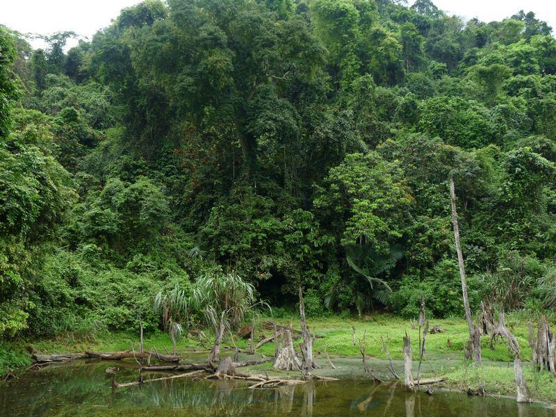 Phu Quoc ist die größte Insel von Vietnam