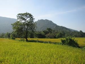 Reisebericht Vietnam - Urlaub im Paradies